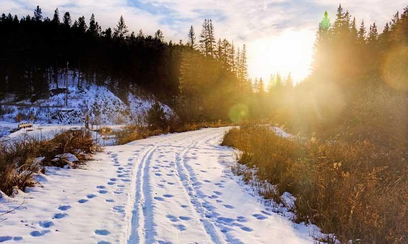 Cross Country Skiing Nordic Skiing Black Hills South Dakota Mickelson Trail