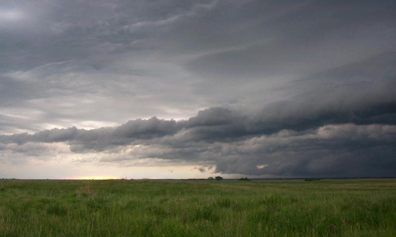 South Dakota Plains Grassland