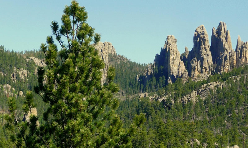 Needles Highway in the Black Hills