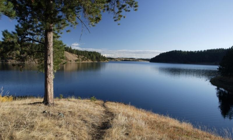 Deerfield Lake in Black Hills National Forest