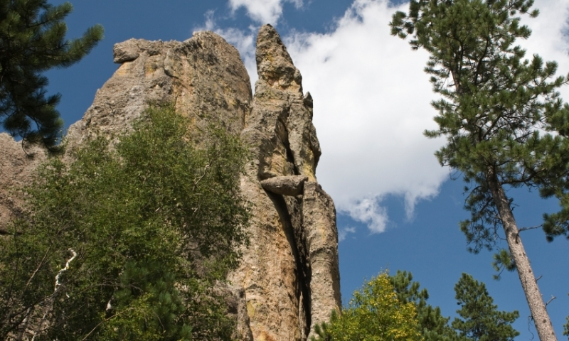 Cathedral Spires in Black Hills National Forest