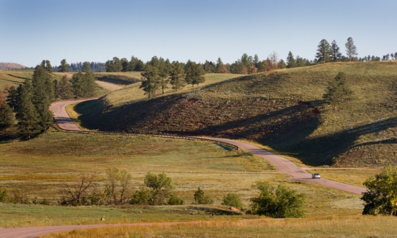 Scenic Drive through Custer State Park