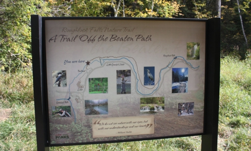 Hiking Trai to Roughlock Falls in the Black Hills