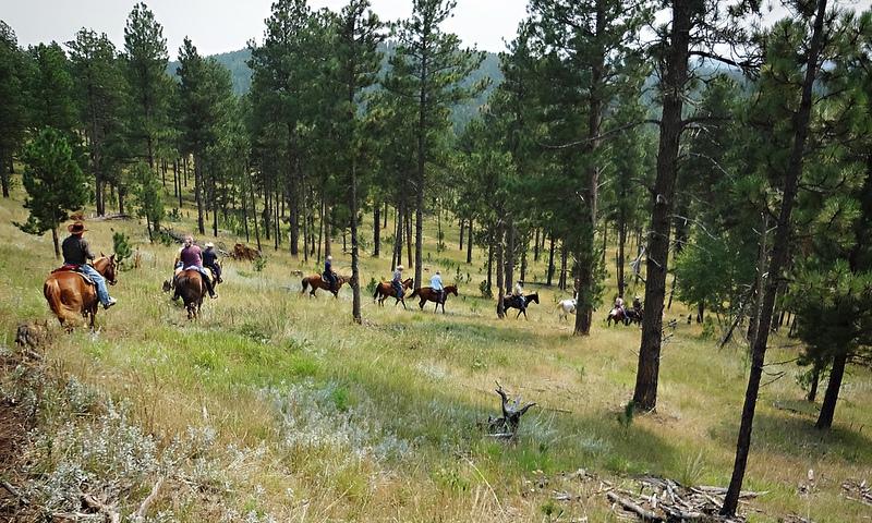 Horseback Riding Black Hills