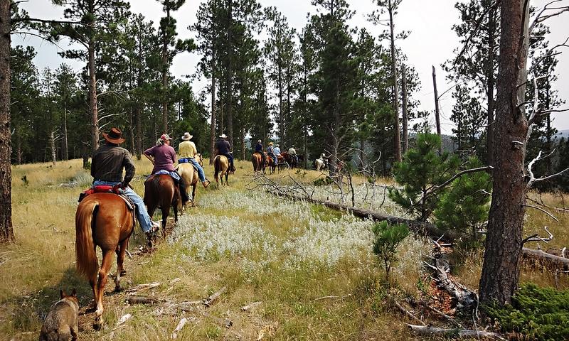 Black Hills Horseback Riding