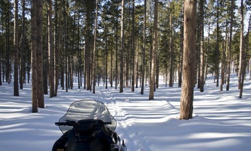 Black Hills Snowmobiling