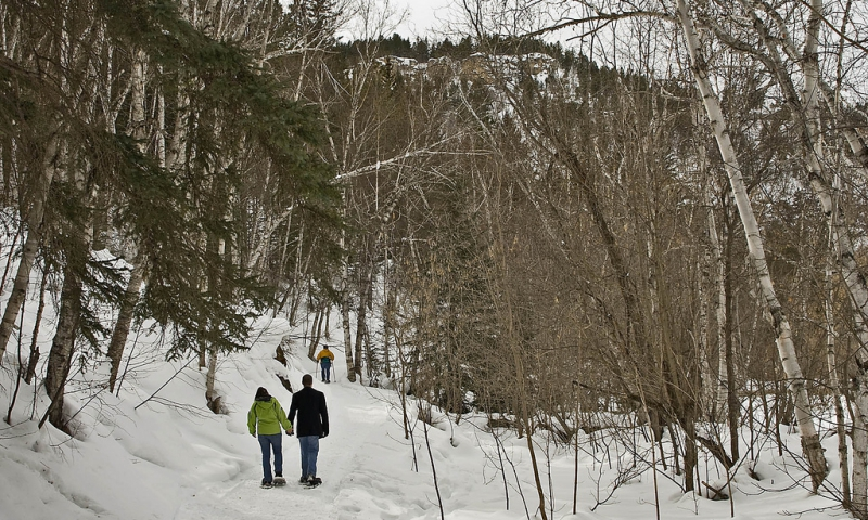 Black Hills Snowshoe Trails